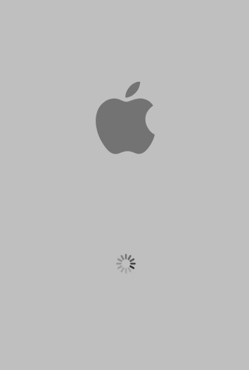 Apple Boot Screen